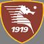 Salernitana badge