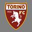 Torino badge