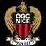 Nice badge